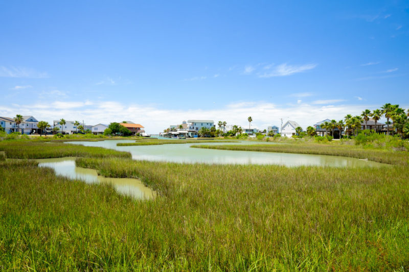 EPA Must Keep Texas Coastal Prairie Wetland Protections in WOTUS Rule