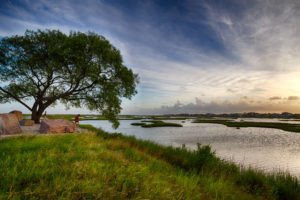 Protect Texas' Wetlands: Save the Clean Water Act!