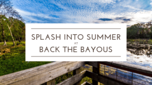 Join Us at Back the Bayous on June 22nd!