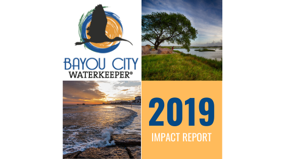 A Year in Review: 2019 Impact Report