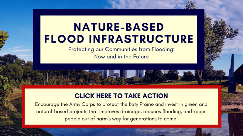 ACTION NEEDED: Protect the Katy Prairie and Demand Nature-Based Projects!