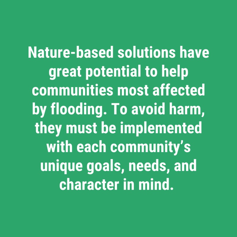 Making nature-based solutions work in Houston's Black and brown Communities